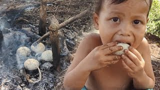 Primitive Technology - Baby Find and Cooking egg ducks in the wild - Cook egg and eating