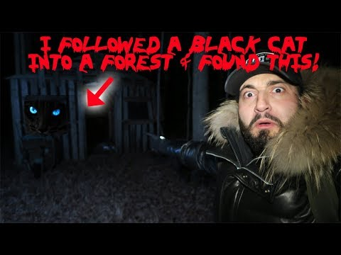 HAUNTED WITCH FOREST AT 3AM!  WE FOUND A BLACK PANTHER!