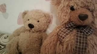 Обзор моих плюшевых медведей .