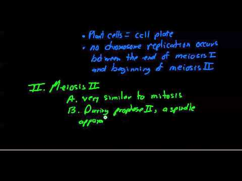 9 30 2015 8 08 57 AM ch 13 meiosis stages genetic variation