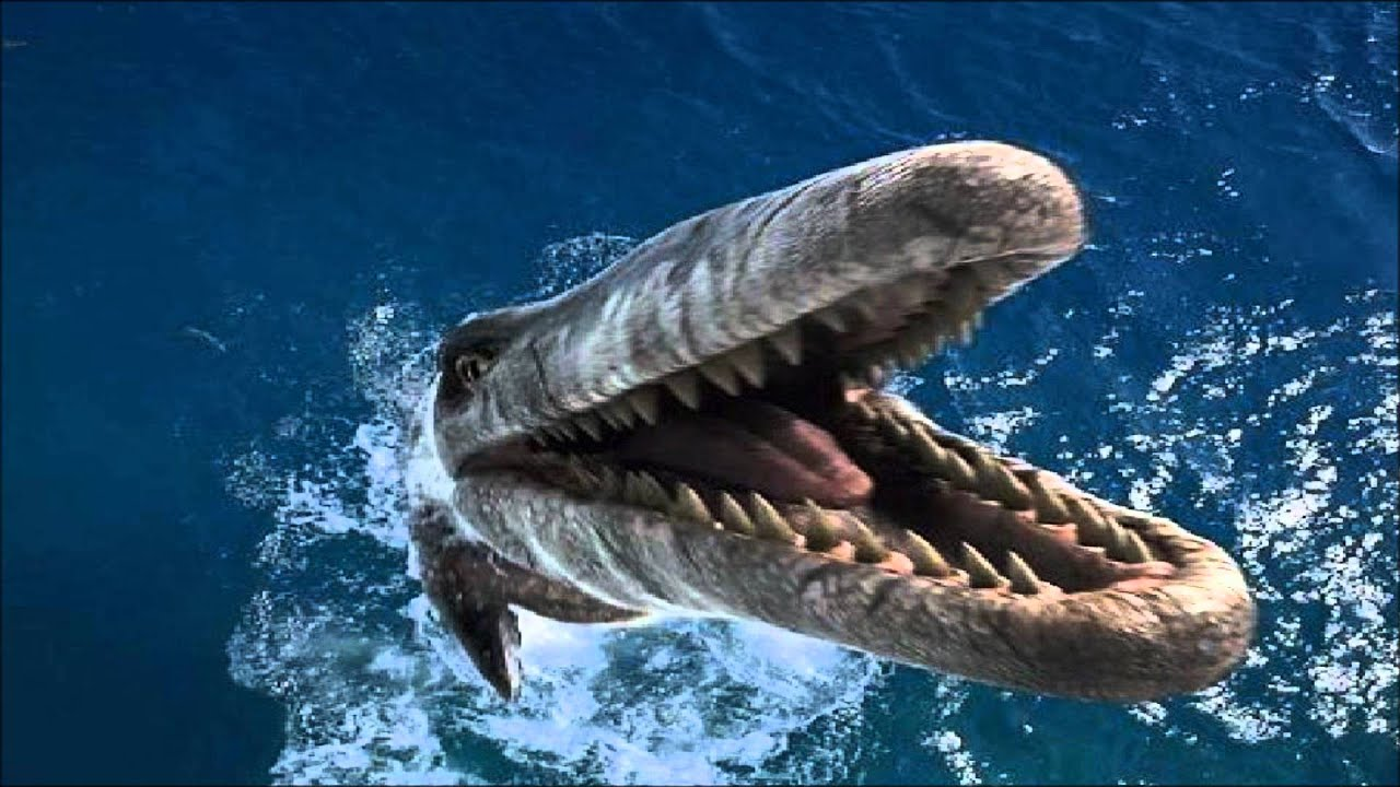 Megalodon Vs Tylosaurus | www.pixshark.com - Images Galleries With A Bite!