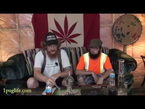 THC episode-447 pelinail by disorderly conduction review