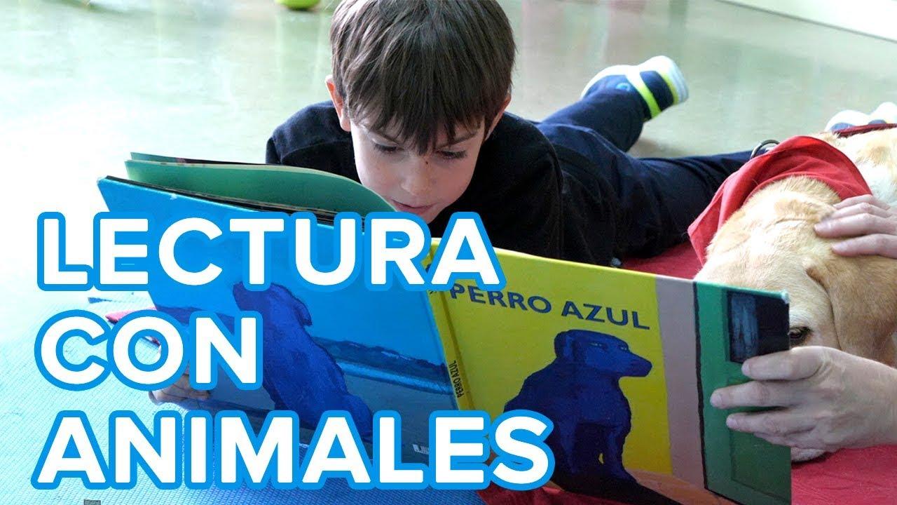 Beneficios de la terapia de lectura con animales para los niños