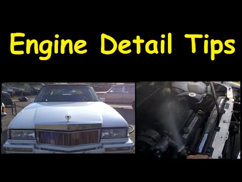 Engine Detail Degrease & Cleaning Tutorial Tips Motor Cleaning
