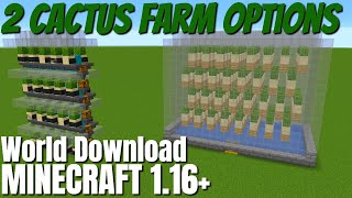 How to Make a Cactus Farm in Minecraft 1.16: Two Minecraft Cactus Farm choices for 1.16 (2020)