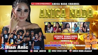 Gambar cover LIVE ANICA NADA (DIAN ANIC) | EDISI malam 09 NOVEMBER 2019 | JUNTIKEBON | JUNTINYUAT | INDRAMAYU