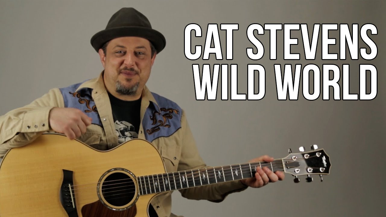 How To Play Cat Stevens Wild World Youtube