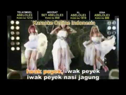 IWAK PEYEK - Trio Macan (Karaoke)