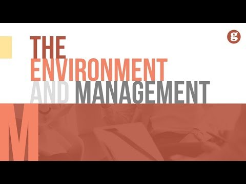 The Environment and Management
