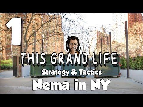 This Grand Life NYC Strategy & Tactics 1: New Nema, New York