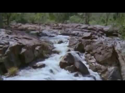 Poovirinjhilla Poovin | INa | Malayalam Movie Song