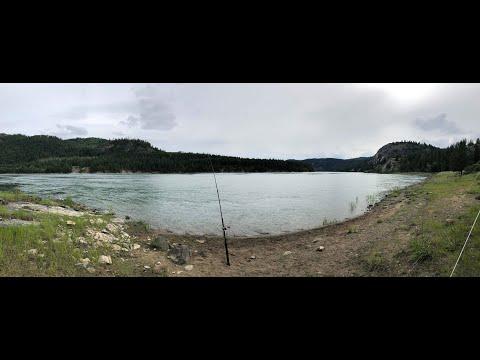 STURGEON FISHING - COLUMBIA RIVER OPENER