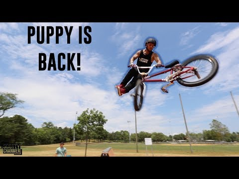 PUPPY ARMS IS BACK IN THE SKATEPARK!