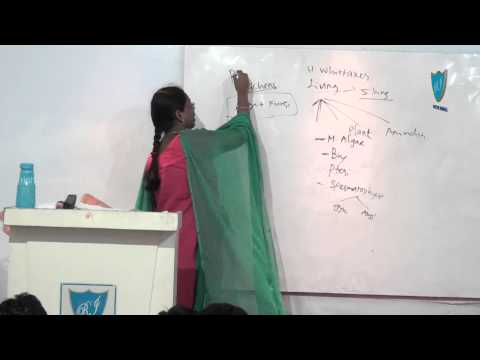 Rich India Science Abinaya 14th feb