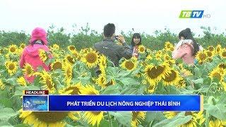 Thời sự Thái Bình 5-1-2018 - Thái Bình TV