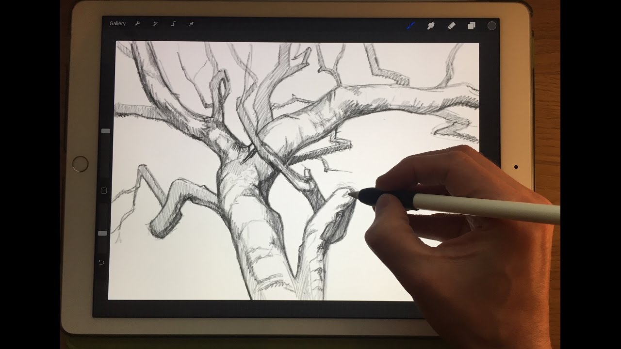 How to draw tree branches apple pencil drawing tutorial on ipad pro 12 9 youtube