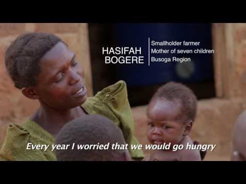 Empowering smallholder farmers to reduce post-harvest loss -short version-