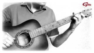 В мире животных. На гитаре. Урок 2