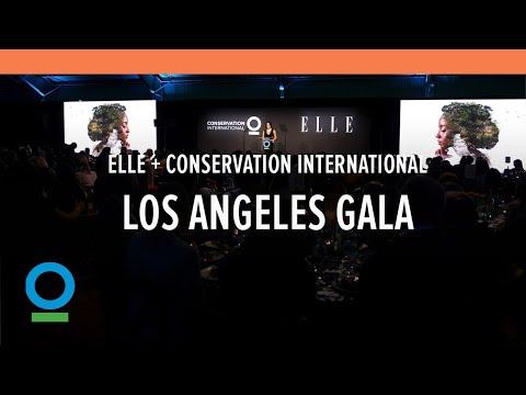 Conservation International + Elle 2019 Los Angeles Gala