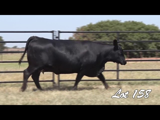 Pollard Farms Lot 158
