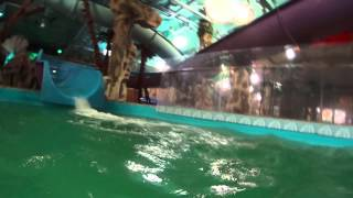 Аквапарк дрим таун(Проведённый день в аквапарке., 2014-11-16T16:43:30.000Z)