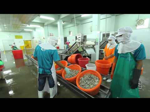 GOOD LABOUR PRACTICES IN THAI FISHERIES INDUSTRY