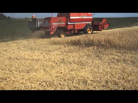 видео: Жнива 2015 МФ 507