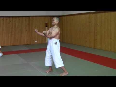 Sensei Kazuo Terauchi, Sanchin kata