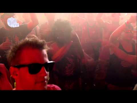 Tomorrowland 2013 - Michael Calfan