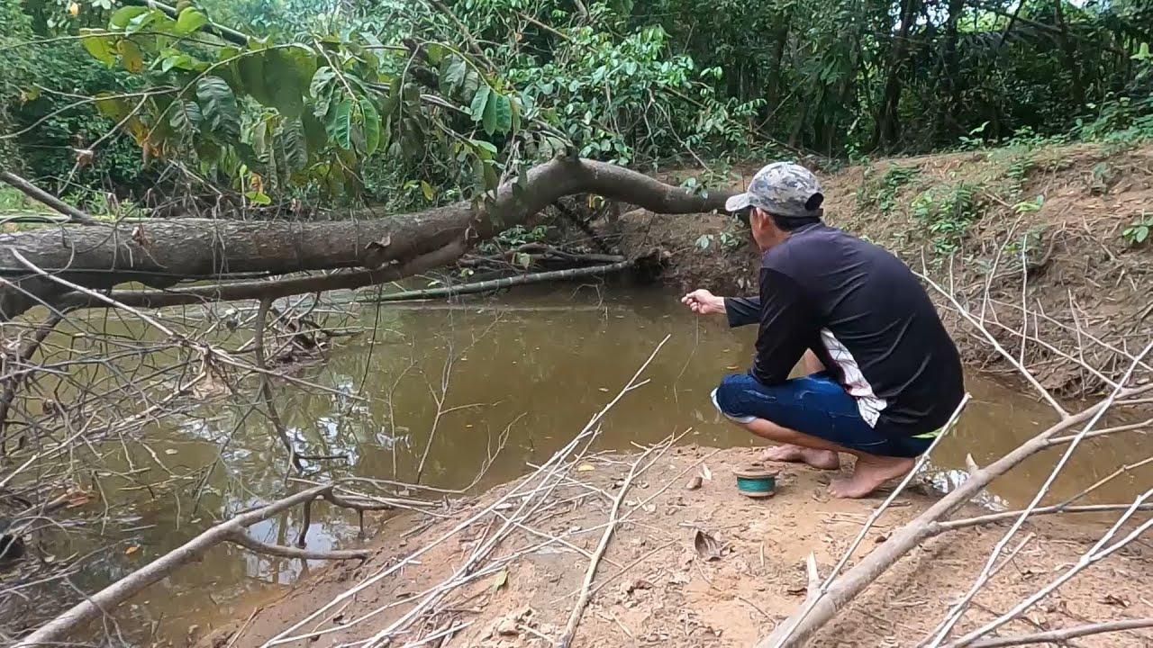 Pesca y Campamento de supervivencia en el Rio.