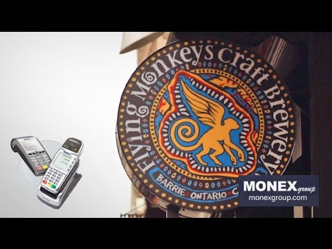 MONEXgroup CANADA'S #1 Credit Card Payment Processing - Flying Monkeys