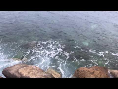 Beauty of Toulon Beach, France