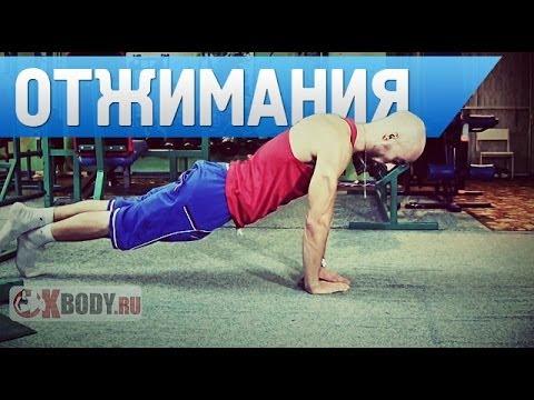 Самые лучшие (мегаэффективные) упражнения для трапеции