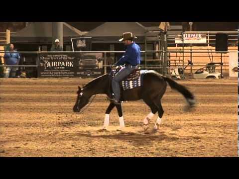 "Andrea Fappani ""Preparing Your Horse to Show"" Clinic 2014"