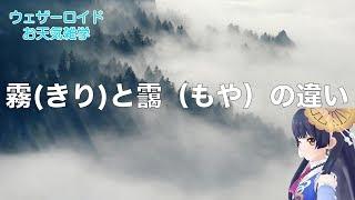 【お天気雑学】霧(きり)と靄(もや)の違い