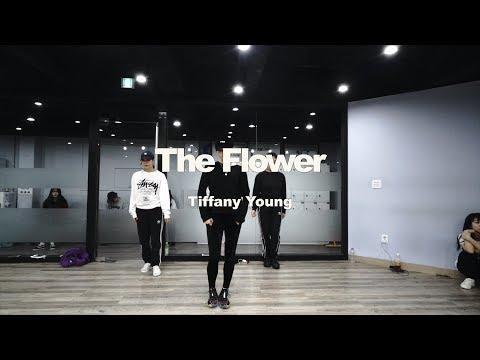 YELLZ CLASS | Tiffany Young – The Flower | E DANCE STUDIO | 이댄스학원 | 걸리쉬안무