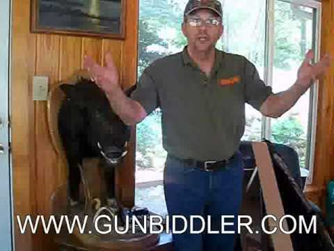GunBiddler penny auction website