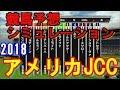 AJCC 2018 競馬予想シミュレーション by StarHorsePocket(SEGA)