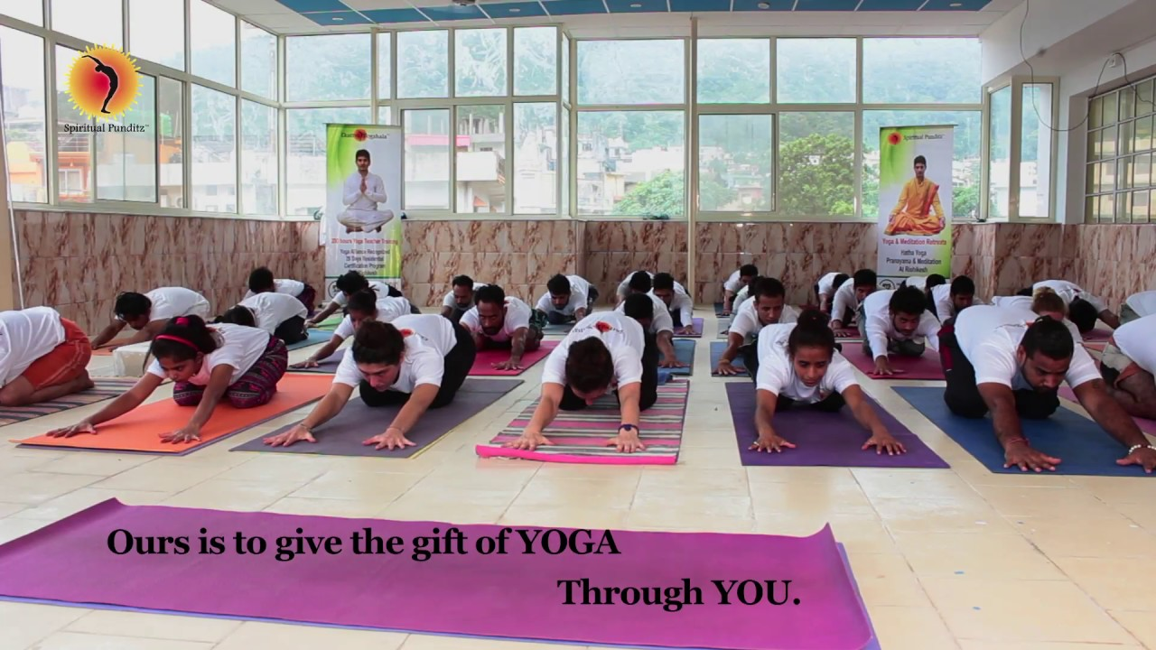 Affordable Yoga Retreats for Families | Summer Camps at