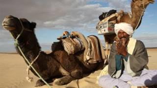 WAS IST WAS - Wüsten - Doku Film DVD Video Wiki Kinder Wissen Sahara Gobi Oase Sand Afrika