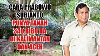 Cara Prabowo Subianto Punya Tanah 340 Ribu Ha di Kalimantan   Aceh, Ternyata Ini yang Ditanam