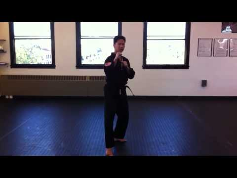 World Tang Soo Do form #3