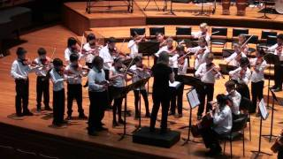 Danse Macabre - Camille Saint Saens - Arr James Red McLeod - Camerata - Sydney Youth Orchestra - SYO