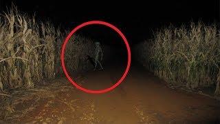 5 Lần Người Ngoài Hành Tinh Xuất Hiện Vô Tình Được Camera Quay Lại || 5 Aliens Caught On Camera