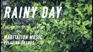 Rainy Lullabies | Meditation Music | Relaxing Sounds | Lullaby | Rain Sounds | Global Mantra