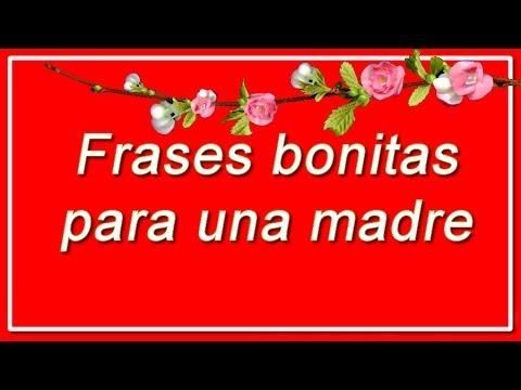 Frases De Amor Para Mamá Cortas Y Bonitas Feliz Día De La
