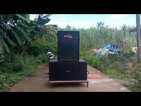 KADAM Sound Dandeli 1bass 1top Tasting