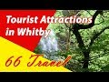 List 8 Tourist Attractions in Whitby, England, UK | Travel to Europe