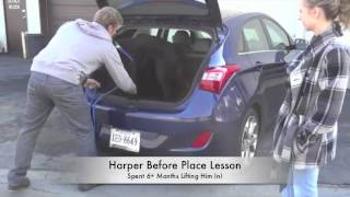 Dog Who Won't Jump In Car: Before/after Video! Best Dog Training Northern Virginia