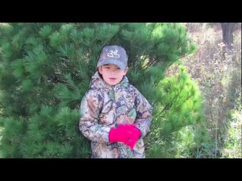 Cleveland christmas tree farm in valley nj 07882